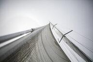 Towering sailboat sail - HEROF17777