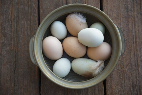 Fresh organic multicolor eggs and feathers in bowl - HEROF18645
