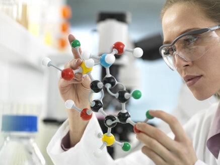Scientist examining a drug formula design using a molecular model in the laboratory. Extra keywords: Molecular model,  ball and stick model, drug design - ABRF00303
