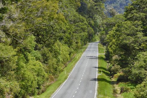 Haast Pass , road through rainforest,  Southern Alps, Otago Region, South Island, New Zealand - RUEF02079