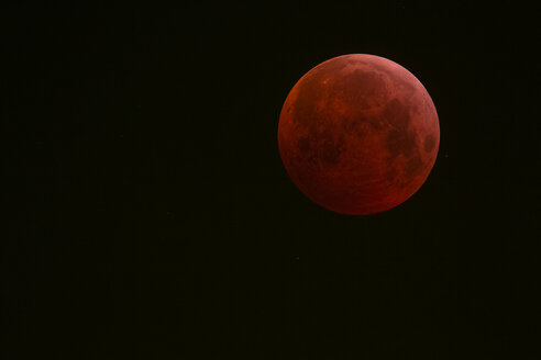 Germany, Frankfurt on Main, total lunar eclipse during maximum eclipse - THGF00078