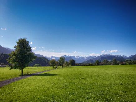 Blick in die Oberstdorfer Berge, Deutschland, Bayern, Oberallgäu, Sonthofen, Altstädten - ALEF00094