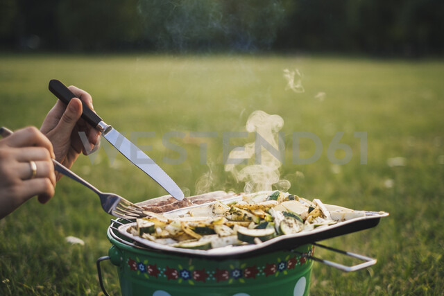 Woman eating barbecued sausages and vegetables on a meadow, partial view - JSCF00133