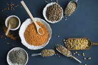 Red lentils, brown lentils, amarant, wheat, spelt wheat and corn in bowls and on spoons - ASF06297