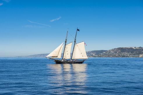 USA, California, Channel islands, Santa Catalina Island, Avalon, Sailing boat - RUNF01112