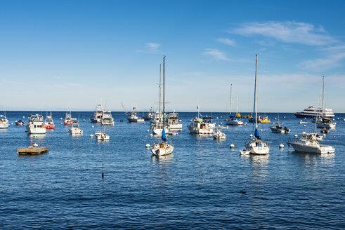 USA, California, Channel islands, Santa Catalina Island, Bay of Avalon - RUNF01121