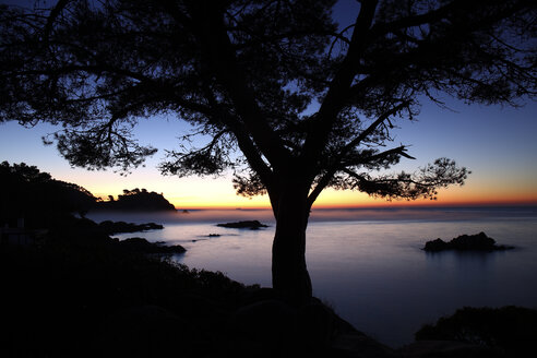 Spain, Cala S'Alguer, Costa Brava, sunset at the coast - DSGF01823