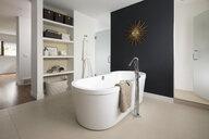 Home showcase modern bathroom with soaking tub - HEROF20523