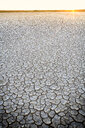Spain, Reserva natural de Lagunas de Villafafila, dried lake bottom at sunrise - DSGF01834