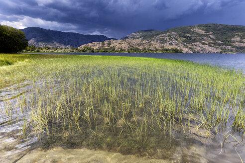 Spain, Zamora Province, Sanabria Lake Natural Park - DSGF01840