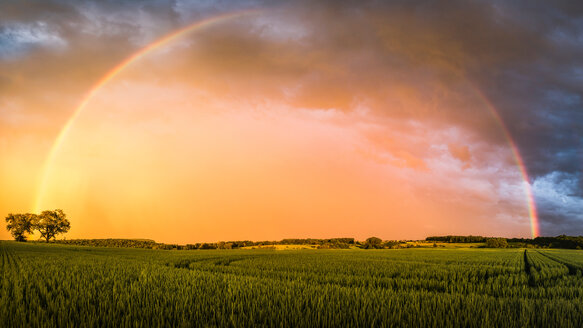 Rainbow over field landscape, Nussbaum, Germany - CUF48769