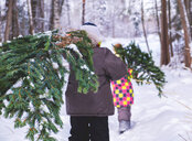 Boy and girl walking through snow covered forest carrying christmas tree, rear view - CUF49021