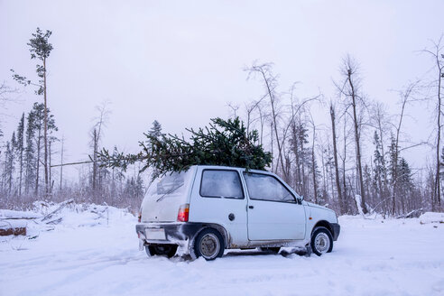 Parked car with christmas tree on roof in snow covered landscape - CUF49024