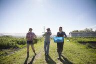 Farmers walking along vegetable crops on sunny farm - HEROF20698