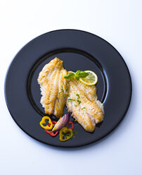 Redfish fillet on black plate garnished with herbs - PPXF00165