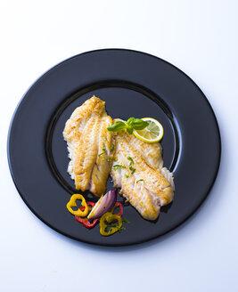 Redfish fillet on black plate - PPXF00165