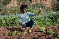 Woman taking selfies of planting lettuce seedlings in an vegetable garden - GEMF02701