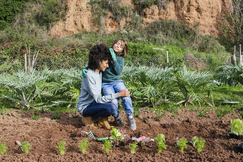 Mother and son planting lettuce seedlings in vegetable garden - GEMF02752