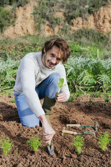 Man planting lettuce seedlings in vegetable garden - GEMF02767