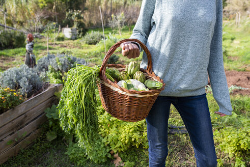 Woman standing in the field, carrying a vegetable crate - GEMF02818