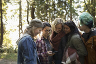 Lesbian parents with daughters and son checking GPS, hiking in woods - HEROF21042
