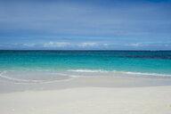 Caribbean, Anguilla, Shoal Bay, East beach - RUNF01168