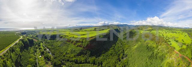 USA, Vereinigte Staaten von Amerika, Pazifischer Ozean, Hawaii, Kauaʻi, Kauai, Hanapepe Valley Lookout, Hanapepe River und Kaumualii Highway, Aerial View - FOF10376
