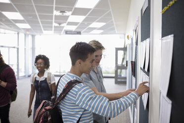 Male college students checking test results on bulletin board - HEROF22641