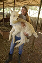 Portrait of smiling mature woman carrying young alpaca in her arms - ECPF00504