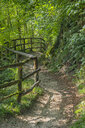 Italy, Veneto, Caglieron caves, Trail in the forest - LOMF00800