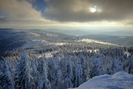 Germany, Bavaria, Bavarian Forest in winter, Great Arber, view above the winter landscape - LBF02370