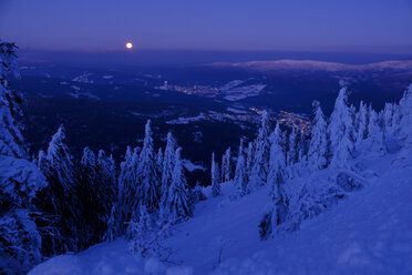 Germany, Bavaria, Bavarian Forest in winter, Great Arber, Arbermandl, snow-capped spruces at dusk with moon - LBF02379