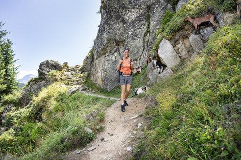 Schweiz, Kanton Wallis, Wanderung Belalp zur Riederalp - DMOF00110