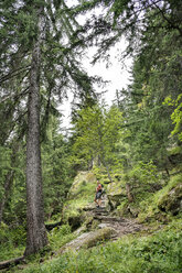 Switzerland, Valais, woman on a hiking trip on the Massaweg in a lush forest - DMOF00122