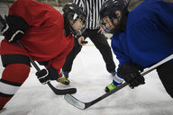 Determined boy ice hockey players ready for face off on ice hockey rink - HEROF23632