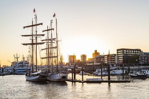 Germany, Hamburg, Baumwall, City Marina at sunset - WDF05115