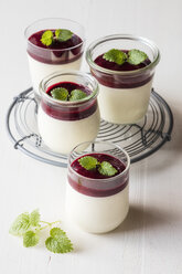 Panna cotta with berry sauce - EVGF03418