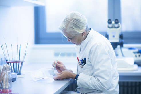 Laborärztin präpariert Probe - SGF02258