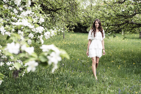 Young woman wearing white dress walking barefoot in garden with blossoming apple trees - WFF00016