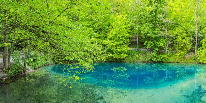 Germany, Swabian Jura, spring that serves as the source of the river Blau - WGF01304