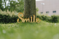Smile sign leaning on tree trunk - KNSF05591