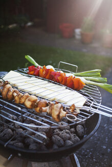 Vegetables and cheese being grilled on barbecue at yard - ASTF04803