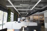 Empty modern open plan office - HEROF24975