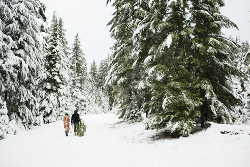 Rear view of couple with pine tree walking on snow covered field in forest - CAVF60735
