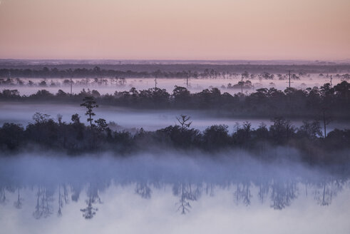 Scenic view of lake and trees against sky during foggy weather at sunrise - CAVF60802