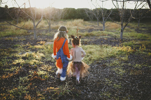 Rear view of sisters in Halloween costumes walking on field at park during sunset - CAVF61188