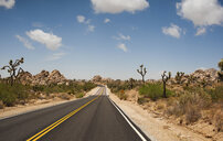 Empty road on desert against sky at Joshua Tree National Park - CAVF61231
