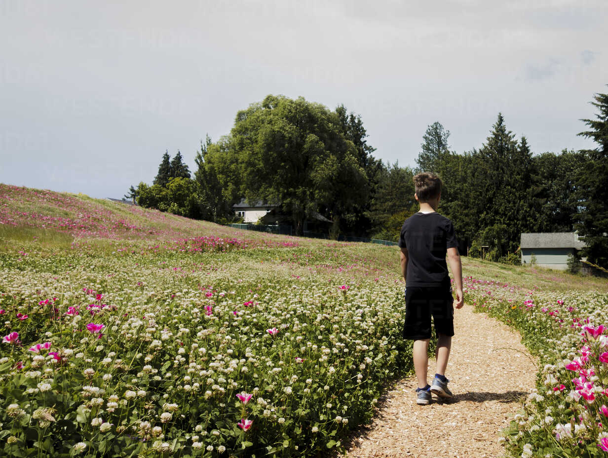 Rear view of boy walking on footpath amidst plants against sky at park during sunny day - CAVF61411 - Cavan Images/Westend61