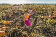 Full length of girl holding pumpkin while standing at organic farm during sunny day - CAVF61567