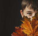Close-up portrait of boy looking away covering face with autumn leaves against black background - CAVF61753